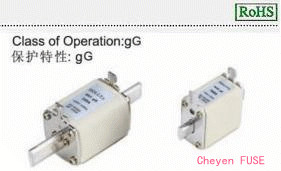 熔断器 NHgG400
