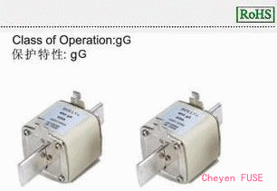 熔断器 NH3gG500