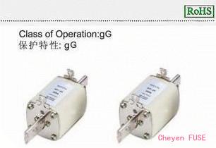 熔断器 NH1gG500
